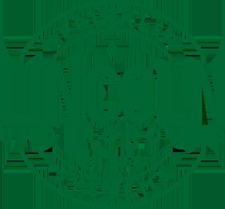 Lincoln Underground Sprinkler